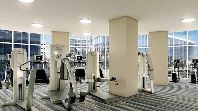 LVL 29 Gym